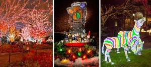 BrewLights 2014 @ Lincoln Park Zoo | Chicago | Illinois | United States